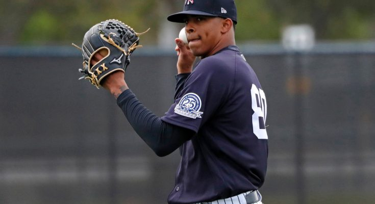 Aaron Boone raves about 'special' Yankees prospect Luis Medina