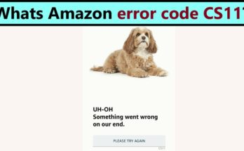 CS11 Error Code